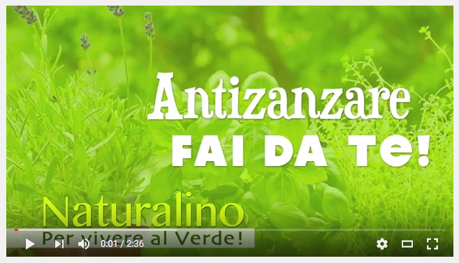 Video spray antizanzare fai da te